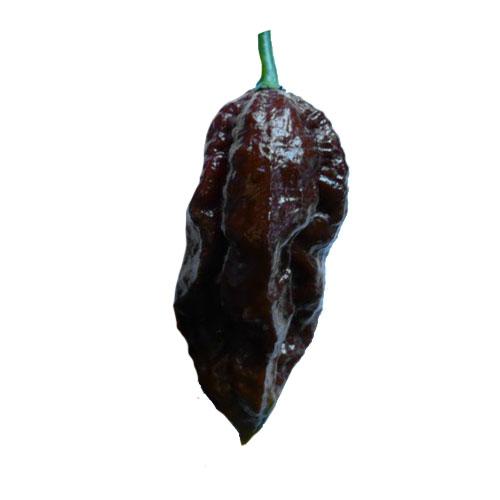 Black Naga