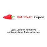 hot-chili-shop-default